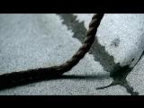 Paul Van Dyk Feat. Rea Garvey - Let Go 2007 HD