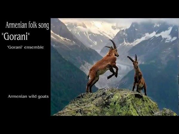 Gorani ensemble - Gorani (Armenian folk song)
