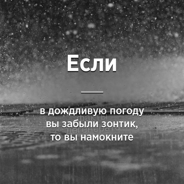 Фото -41438670