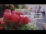 8 марта Menu.by