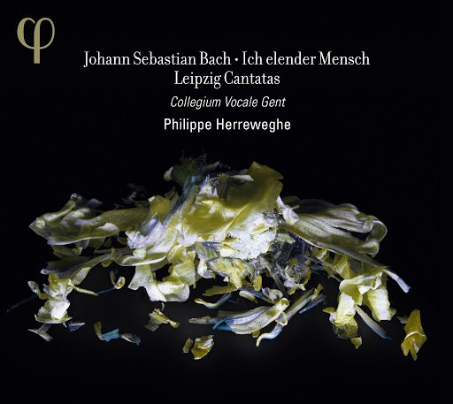 Johann Sebastian Bach альбом Bach: Ich elender Mensch & Leipzig Cantatas