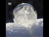 Пузырь в мороз