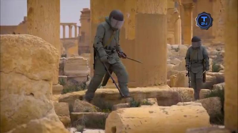 Сирийские хроники. Фильм первый | Т24