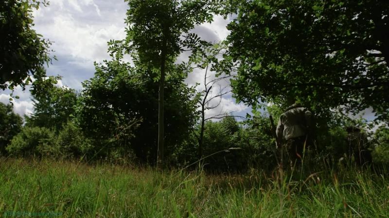 BBC «Ферма во времена Тюдоров» (5 серия) (Познавательный, история, исследования, 2013)
