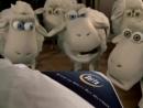Рекламные ролики про овечек Serta. Все серии.