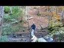 Матрасная Боржава. Шипот. Жизнь в лесу