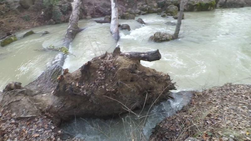 Hello, всем любителям пони, за пределами Крыма