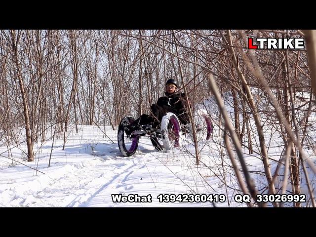 Camel Trike 4×4 Fat Tire Quad Snow Mountain Crossing
