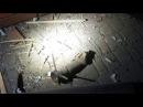 Из гранатомета обстреляли кафе в Белгороде Днестровском