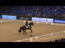 Terhi Stegars and Axis TSF, CDI-W Amsterdam 2015 - GP