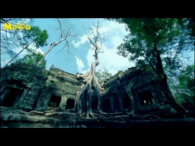John Kaizan Neptune - Golden Lotus (Buddha Bar Classics HD) Mu©o