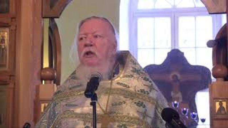 Димитрий Смирнов 2012 04 08 Проповедь на Вход Господень в Иерусалим Вербное воскресенье