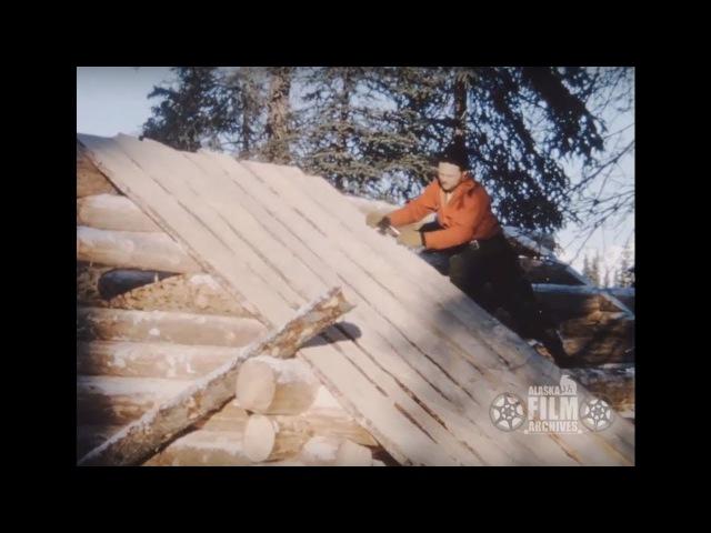 Building an Alaskan log cabin