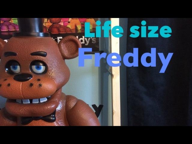 Life size Freddy fazbear review