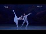 Oksana Skorik and Konstantin Zverev A Midsummer Night's Dream