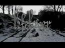 Lifelover - Ms Salmonella