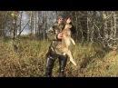 охота на зайца, охота на рябчика