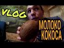 Vlog/ Олег Некрасов/ пьем молоко КОКОСА