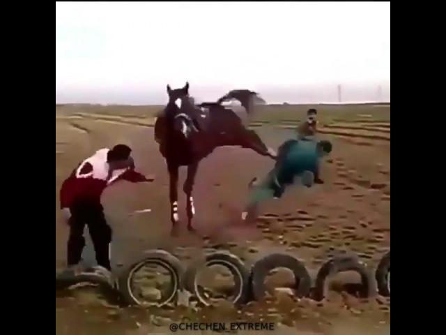 "☣ VIDEO 4ⓧ4 ЭКСТРИМ ОРУЖИЕ ⛰ on Instagram: ""Дал пинка 🐴🤕 @chechen_extreme @chechen_extreme @chechen_extreme turkey чечня нива lada грозны..."