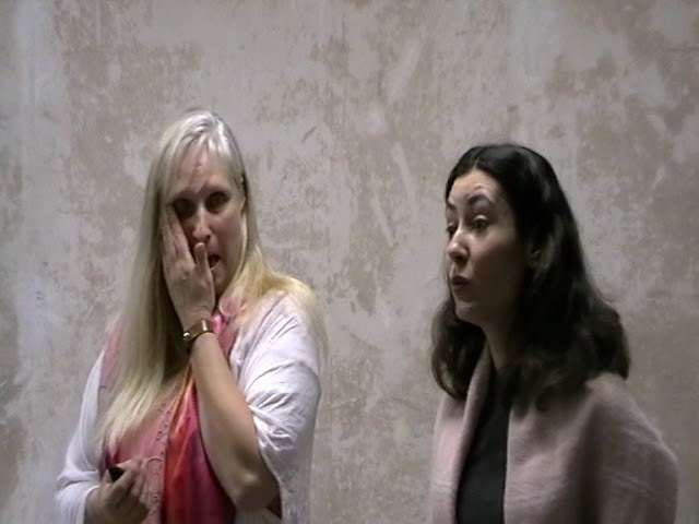 Бломберг терапия и аутизм. Открытая лекция. Часть 1. Киев. Ноябрь 2017 года.