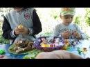 Открываем сразу 10 Kinder Сюрпризов Маша и Медведь и другие игрушки