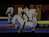 Randy Newman - Putin (Official Video) GRAMMY-2018 AWARD