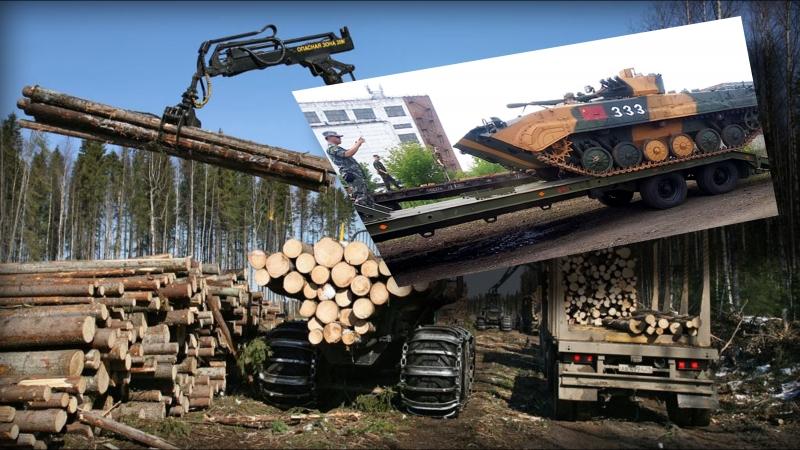Вырубка и вывоз российского леса в Китай. Ввоз в Россию китайской военной техники.