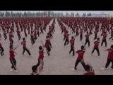 Занятия в Шаолиньской Академии кунг-фу