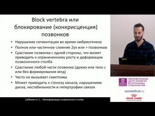 Субботин А. С. - Мальформации позвоночного столба