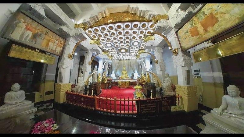 Шри-Ланка 360: храм зуба Будды в Канди и дерево Николая II