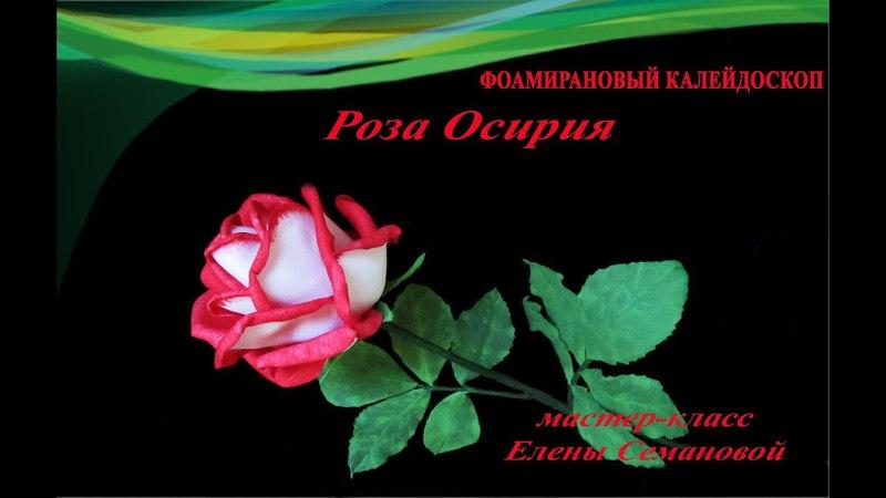 ч 1 Роза Осирия из фоамирана. МК Елены Семановой