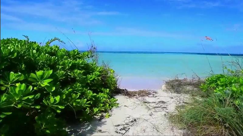 Сказочный Пляж с розовым песком_ Остров Харбор Багамские острова