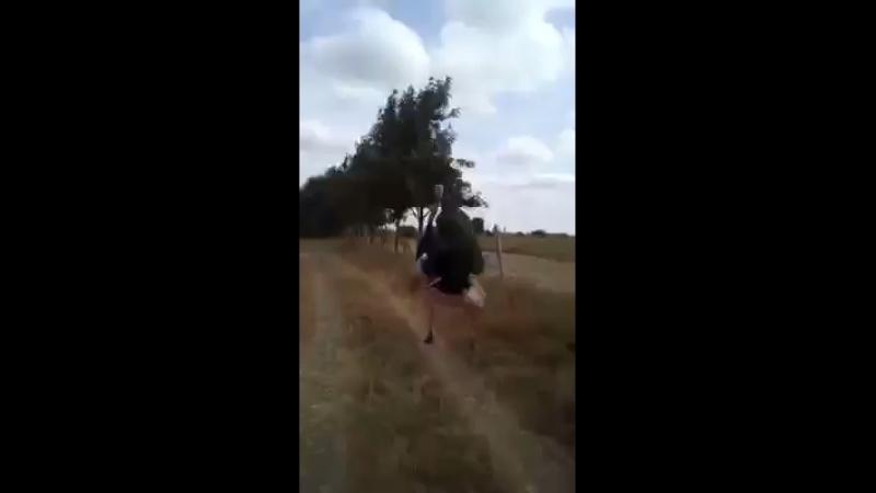 Наездник страуса
