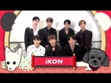 iKON - Happy New Year (chinese)