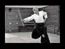 Aikido Kokyu nage Bruno Gonzalez budapest mai 2017 part 1/2