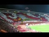 Crvena Zvezda supporters performance before the game vs FC BATE Borisov