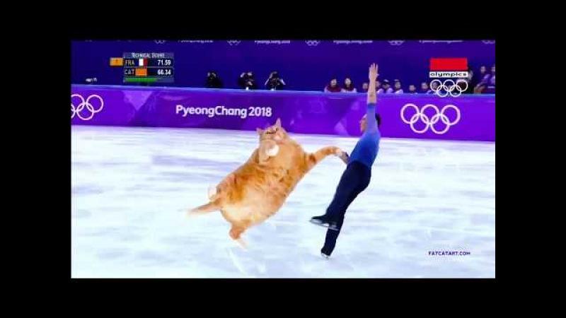 Фигурное катание с котом/Олимпиада 2018/Пары/Figure Skating with a cat/Olympics 2018/Pair