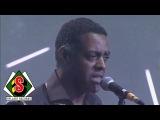 Africando - Colombia Mi Corazon (feat. Ronnie Baro) Zenith Live