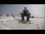 Ловля наваги на махалки и блесны.  Mr.Musurok Lures and Rods. Охотск (Хабаровский край)