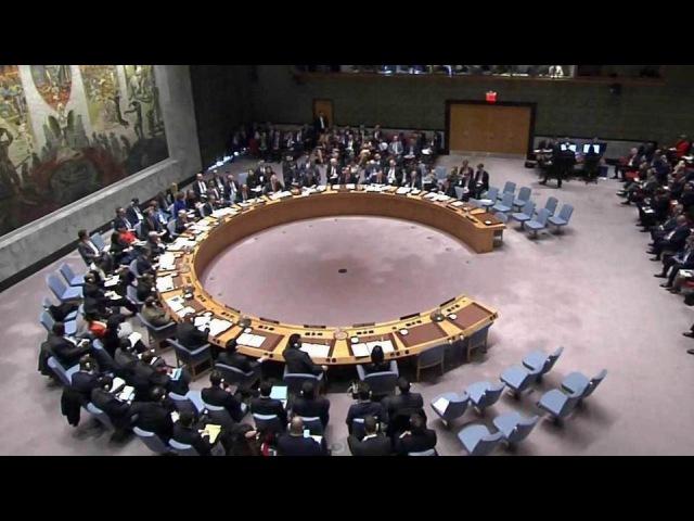 Назаседании Совбеза ООН обсудили корейский кризис, проблему химоружия вСирии...