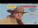 ELVIS PRESLEY  - FLAMING STAR  THE ALTERNATE ALBUM