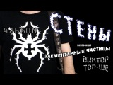 Виктор Тор-Ше, песня: Элементарные частицы, альбом: Стены.