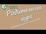 Родительская аура Академия Целителей, Николай Пейчев
