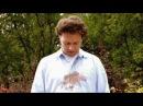 Реклама Миф 3 в 1 Пятно от жареной курочки