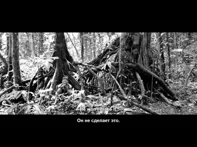 Объятие змеи трейлер Реж Сиро Герра