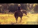 Очень красивый клип про лошадей!