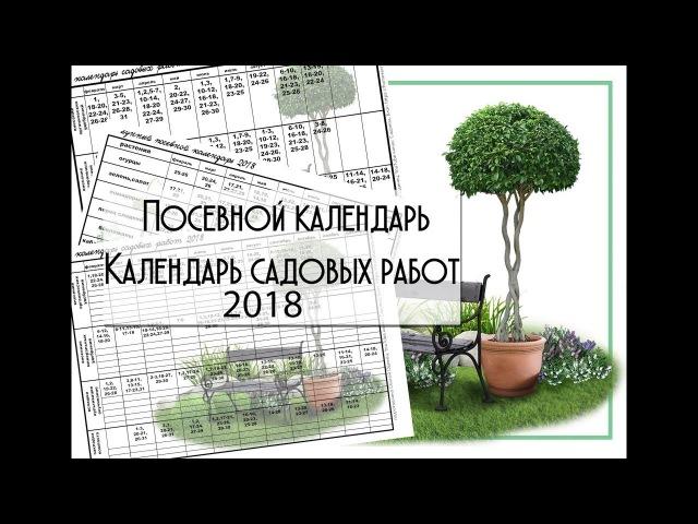 Лунный посевной календарь 2018. Обзор и ссылка на скачивание.