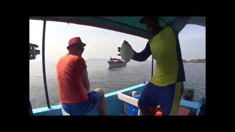 Аравийское море. Рыбалка. Надуваем рыбу-шар.