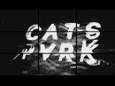 Lack Of Music (Выпуск №8) - гр. Cats Park