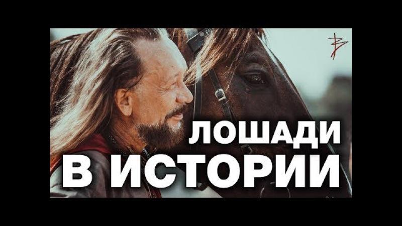 Правда о троянском коне. Фальшивые колесницы в музеях. Историческая правда о лош...